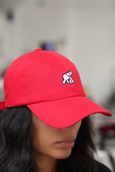 High Goals polo dad hat, red