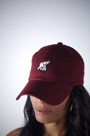 High Goals polo dad hat, crimson