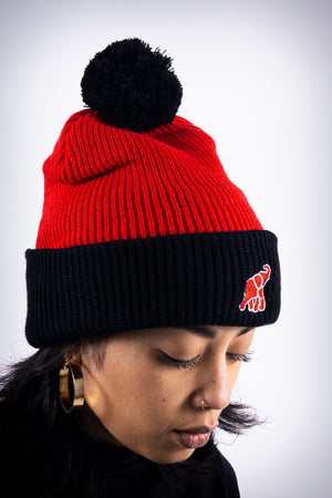 High Goals pom-pom beanie, red/black