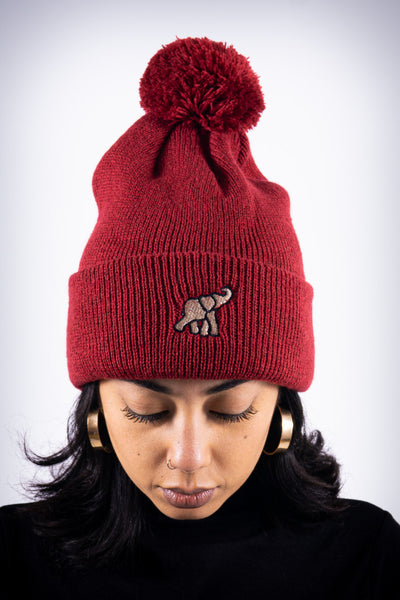 High Goals pom-pom beanie, crimson