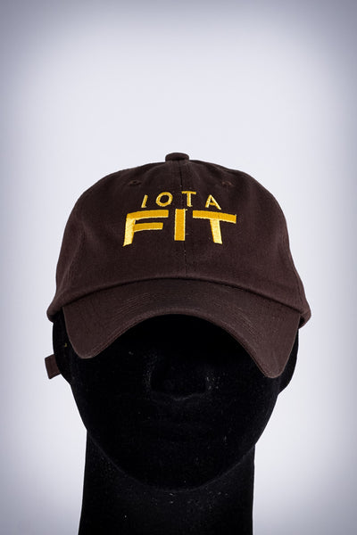 Iota FIT polo dad cap, brown
