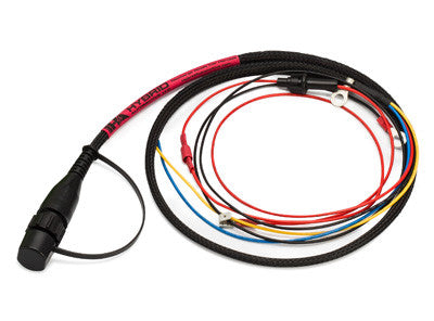 Prolong® Battery Systems Car Harness - Discharge Ready