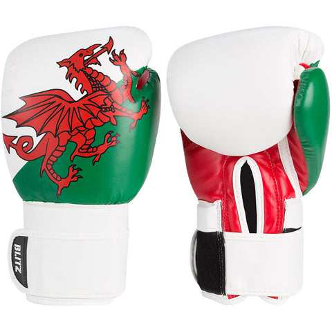 Country 10oz Boxing Gloves Wales