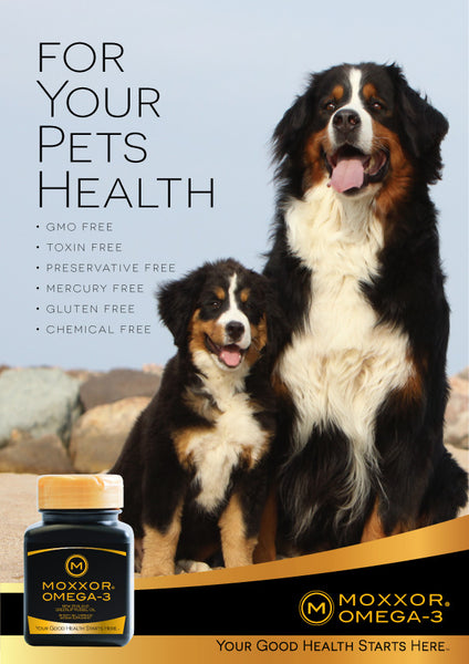 For Your Pets Health