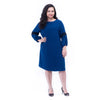Puffed Sleeve Dress