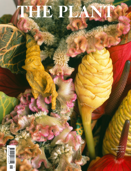 THE PLANT magazine issue 12 | FLOWERS