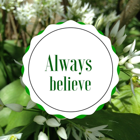 Always believe quote by Tiddler & Fox
