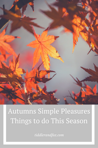Autumns Simple Pleasures, things to do this season by Tiddler & Fox