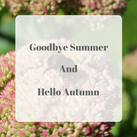 GoodBye Summer and Hello Autumn by Tiddler & Fox