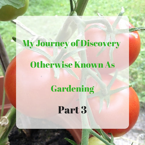 My Journey of Discovery Otherwise Known as Gardening Part 3 by Tiddler & Fox