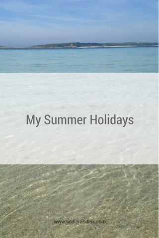 My Summer Holidays blog post by Tiddler & Fox