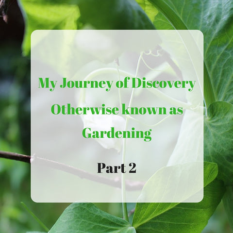 My Journey of Discovery Otherwise Known as Gardening Part 2