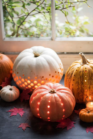 Ideas for Pumpkin Carving 2016 by Tiddler & Fox