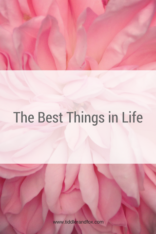 The Best Things in Life by Tiddler & Fox Blog