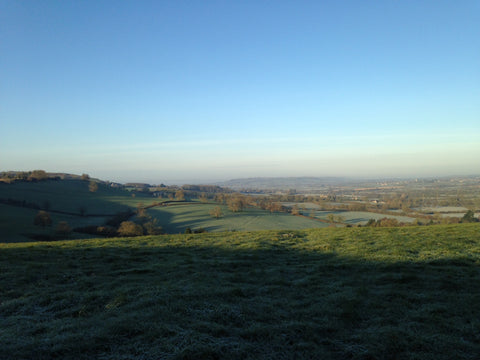 View from a Somerset winters walk by tiddlerandfox.com