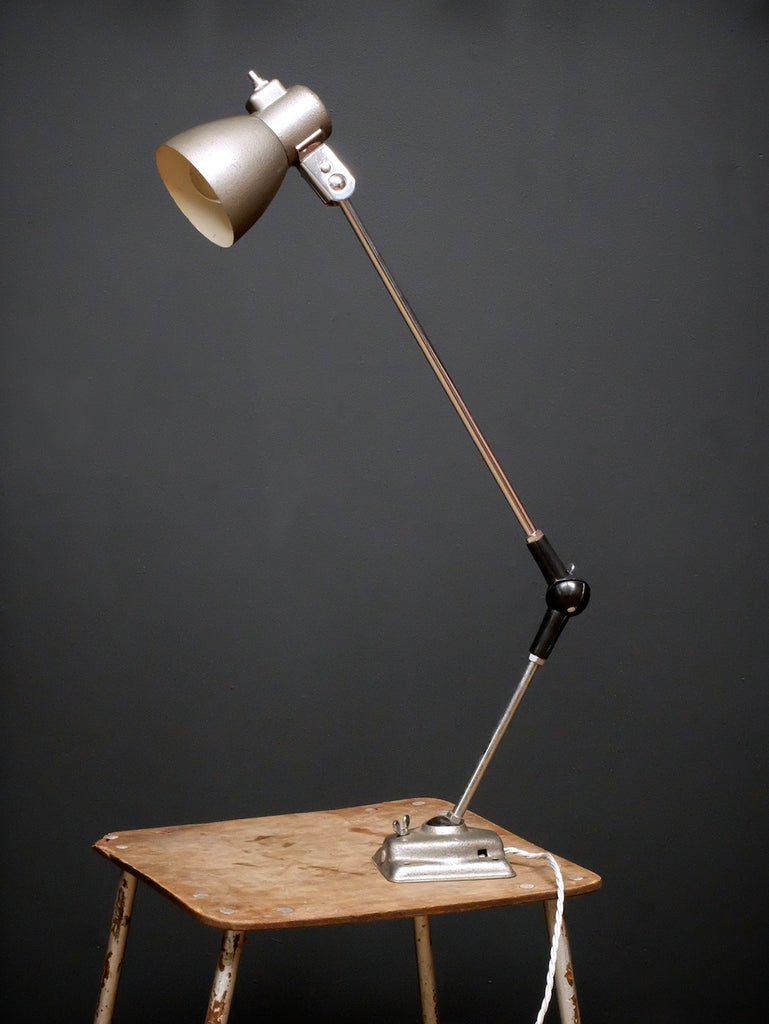 Adjustable Work Light