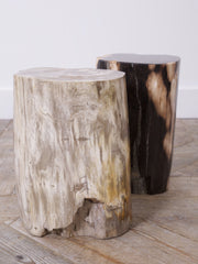 Petrified Tree Stump Stool