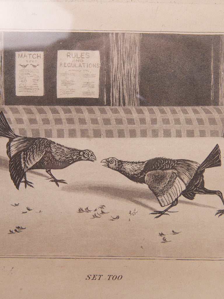 Cock Fight Engraving