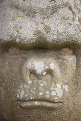 Monumental Carved Stone Gorilla Bust