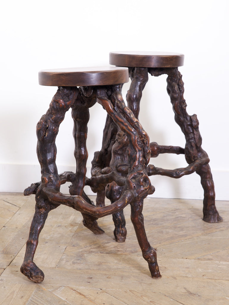 Root Stools