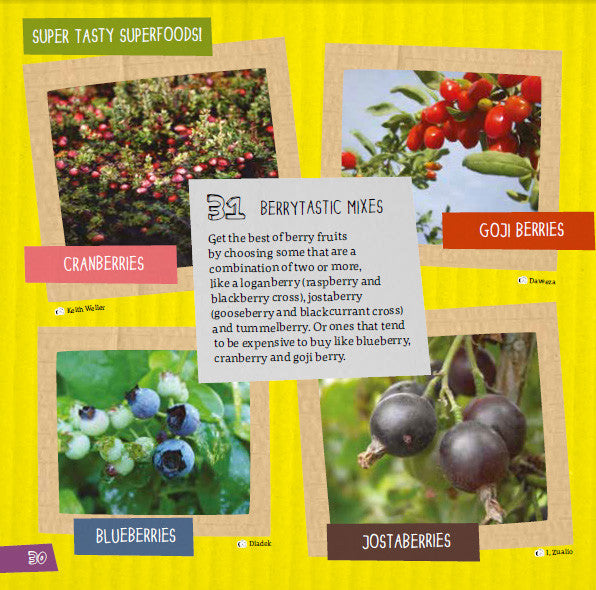 Sample page from inside How will your garden grow book