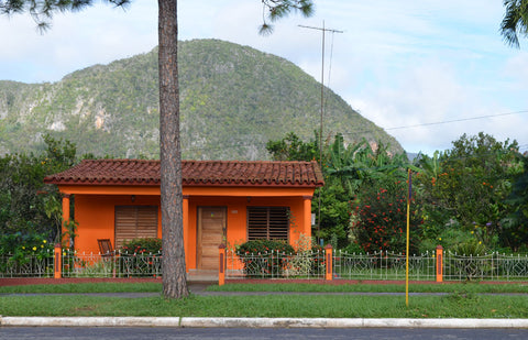 Vinales Orange house