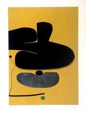Victor Pasmore Points of Contact 18