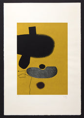 points of contact, 20 by victor pasmore