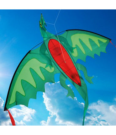 CHINESE DRAGON KITE
