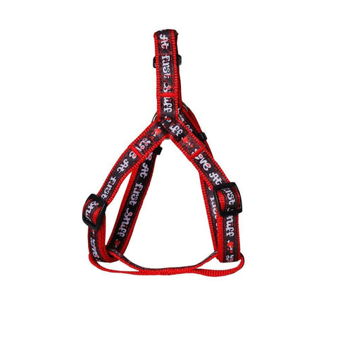 Collars & Leashes - Love At First Sniff Harness Collar