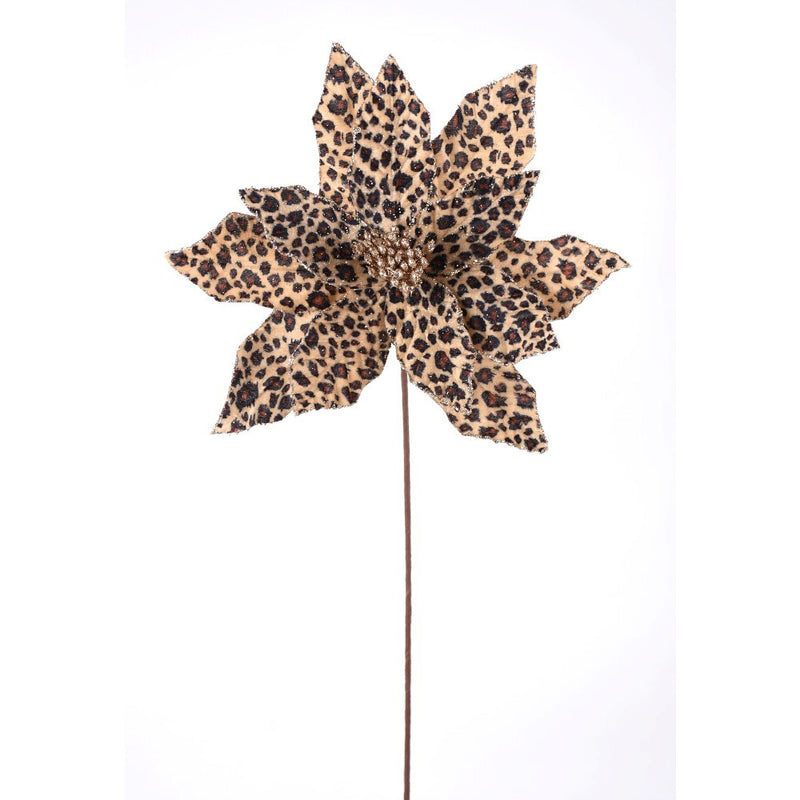 Cheetah Print Poinsettia