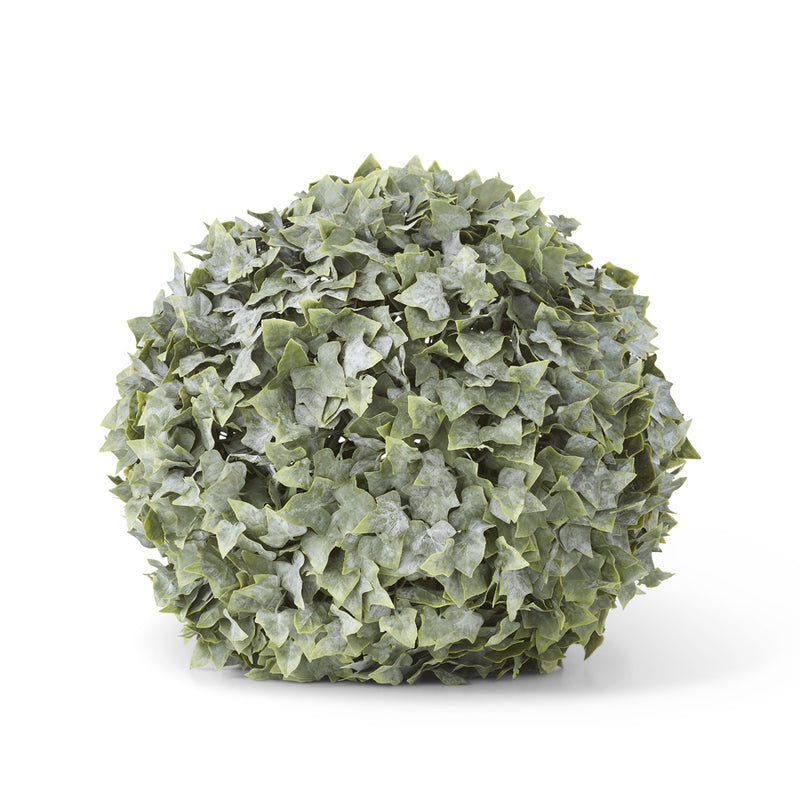Powdered English Ivy Ball Multiple Sizes