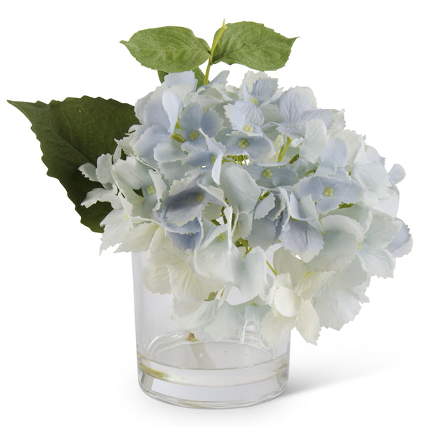 Blue Hydrangea in Glass Vase