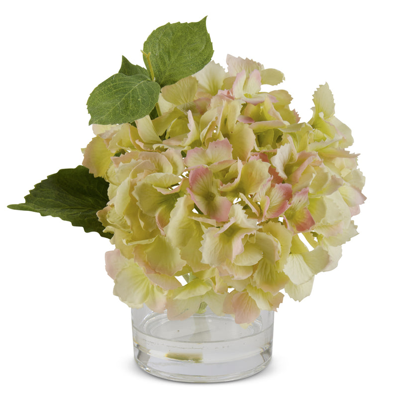Yellow Hydrangea in Glass Vase