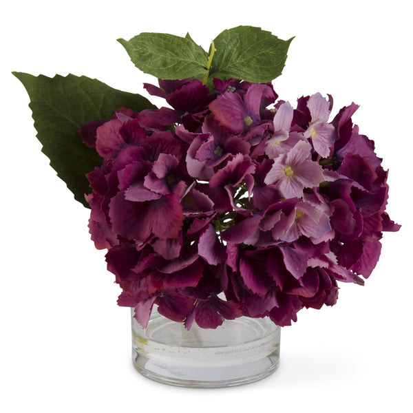 Purple Hydrangea in Glass Vase
