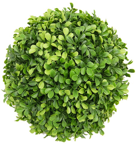 Large Boxwood Ball