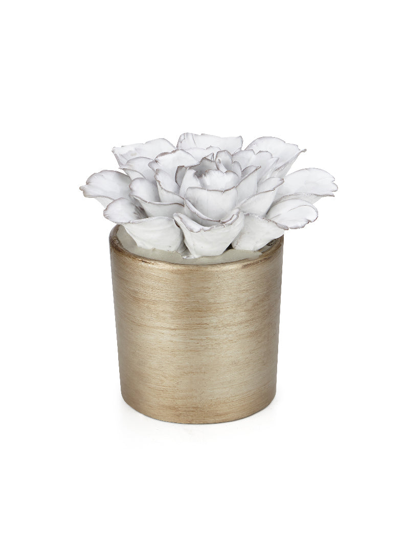Sylyn Ceramic Potted Flower