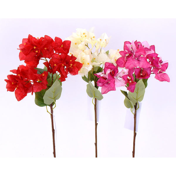 Bougainvillea Pick