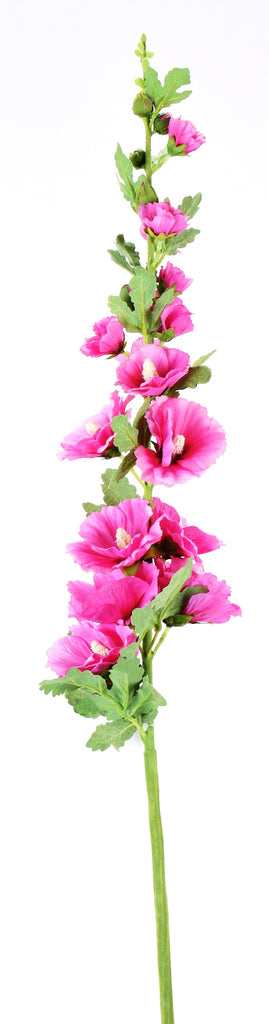 Hollyhock Bright Pink Stem