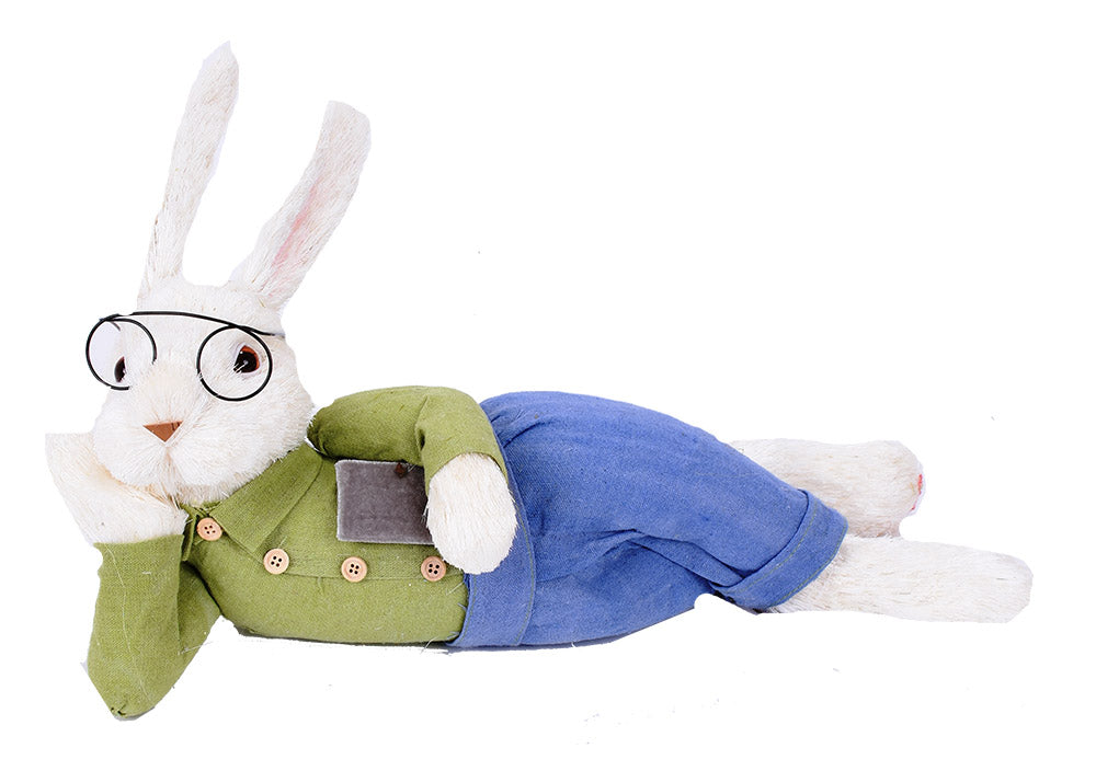 Book Worm Laying Bunny