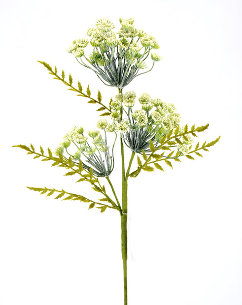 Queen Anne's Lace Pick