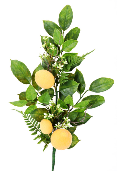 Lemon Fern Spray