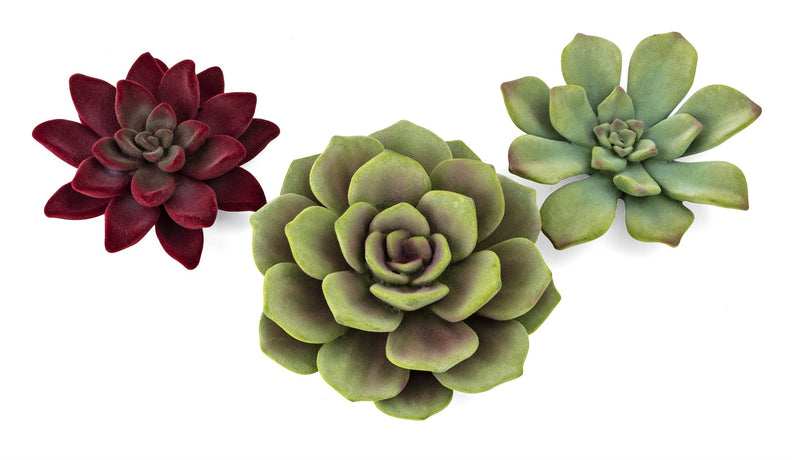 Flocked Succulent Wall Decor