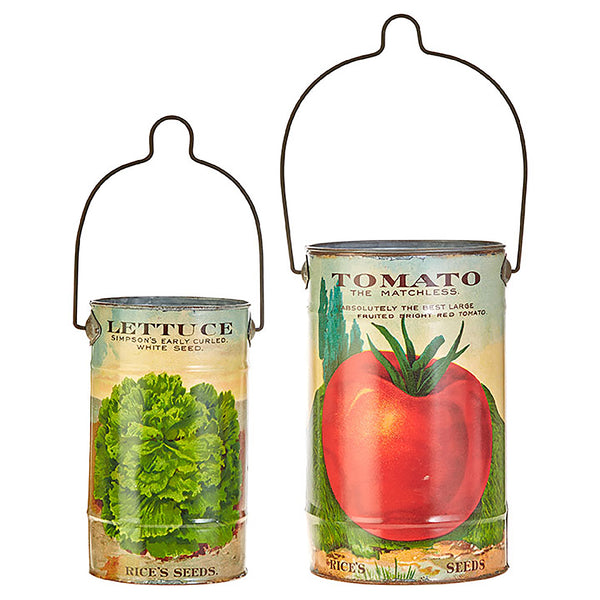 Tomato and Lettuce Tin Can Buckets