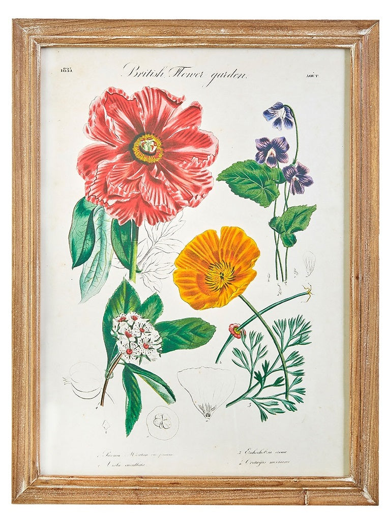 Spring Botanical Framed Prints