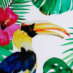 Tropical Toucan Wall Art