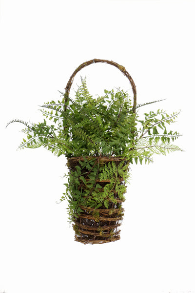 Fern in Wall Basket