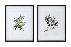 Olive Branch Wall Art