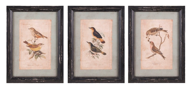 Woodland Bird Wall Decor  17.5 x 12.5 - Paul Michael Company