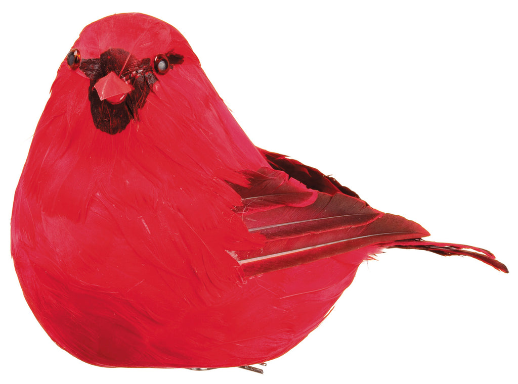 Feather Cardinal with Clip